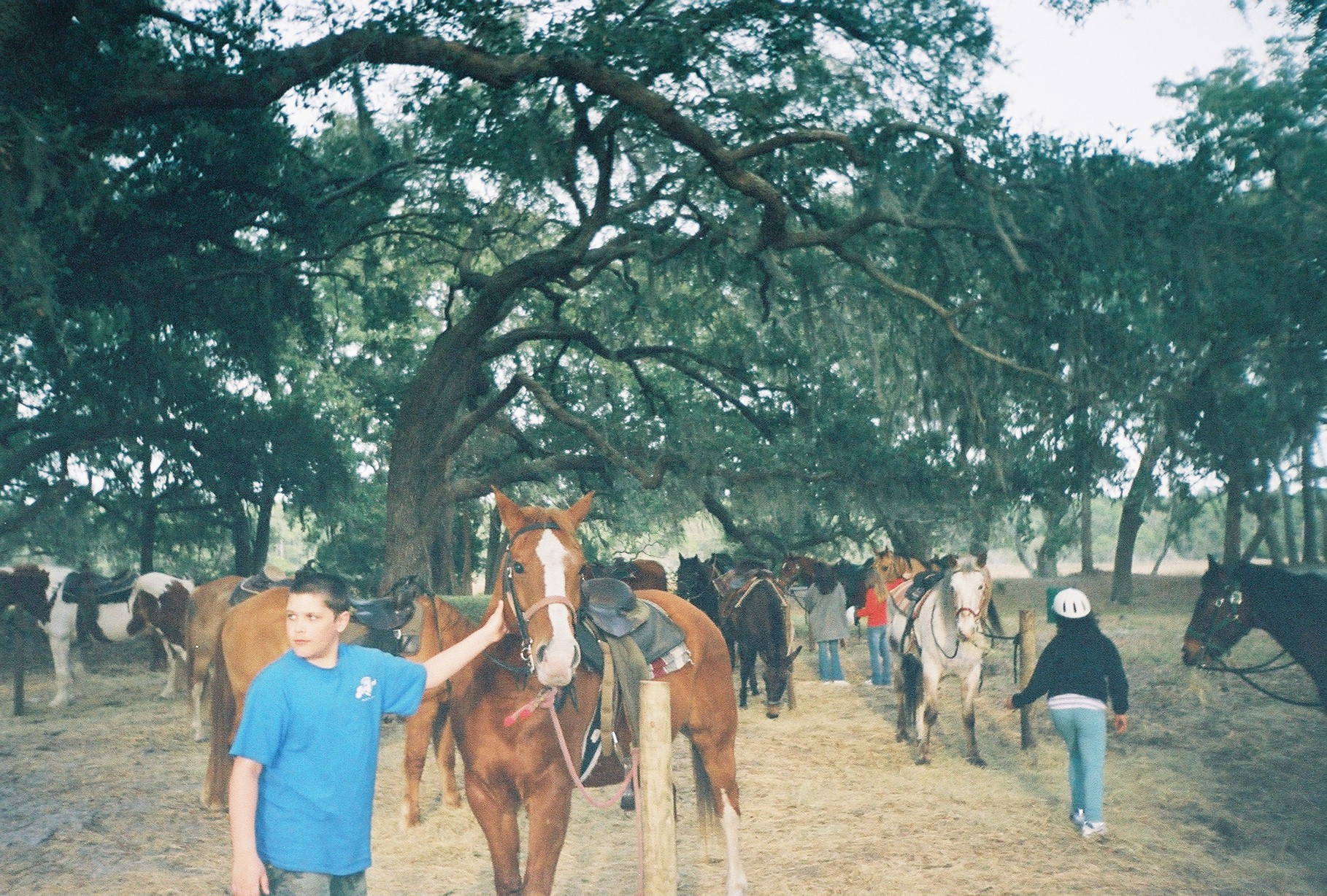 Mike goes horseback riding 2003